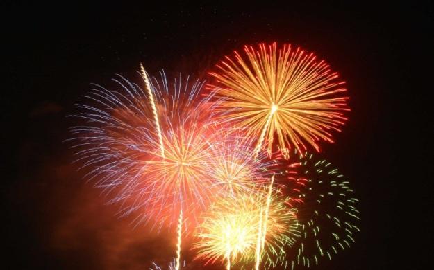 dogblog-fireworks