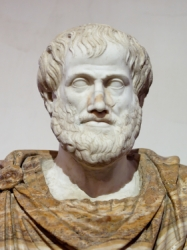 dogblog-Aristotle