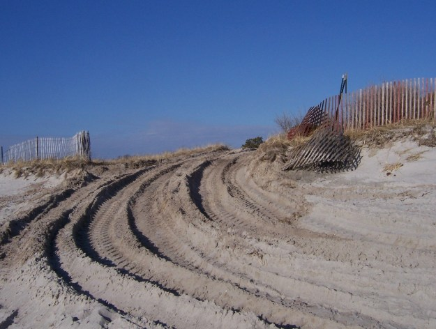 Dunes?  What dunes?  We're creating piping plover habitat!