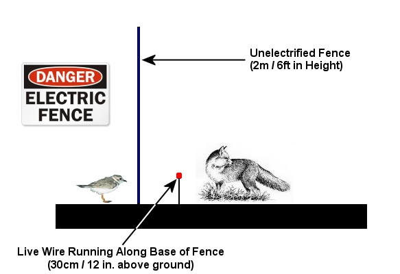dogblog-fox fence