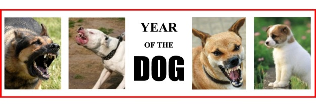 dogblog--year of the dog